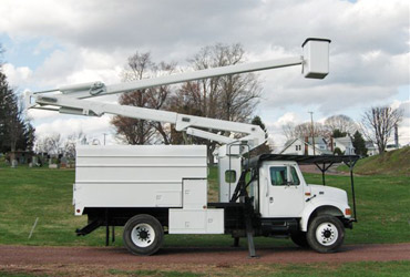 Our bucket truck allows us to safely remove big trees that other cape cod tree companies cannot
